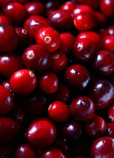 The Cranberries vydávají po deseti letech nové album